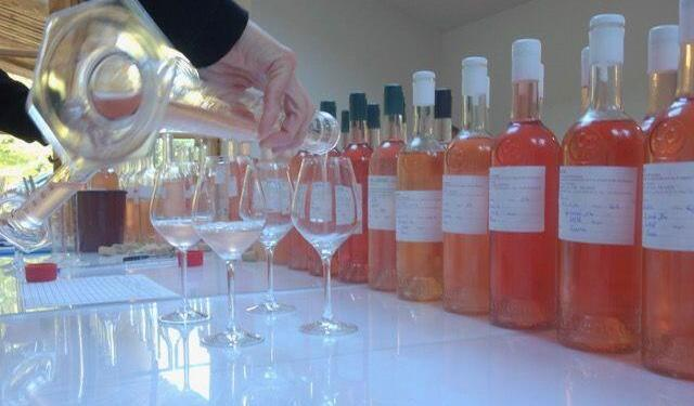 Blending roses from Provence at Mirabeau Wines