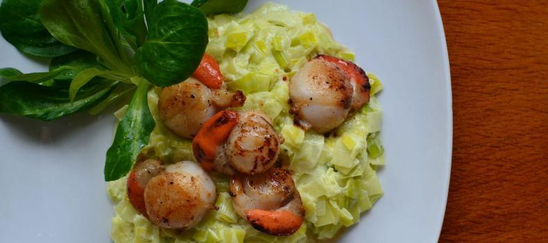 Seared Scallops St. Jacques Creamy Leeks