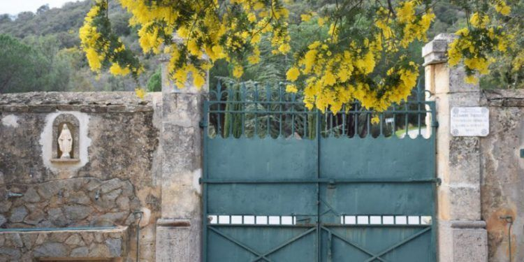 French Riviera Mimosa Trail Photos @girlgonegallic