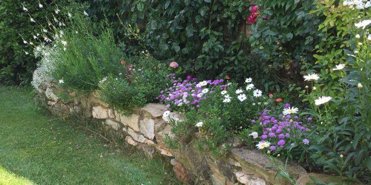 Mas d'Augustine Garden @bfblogger2015