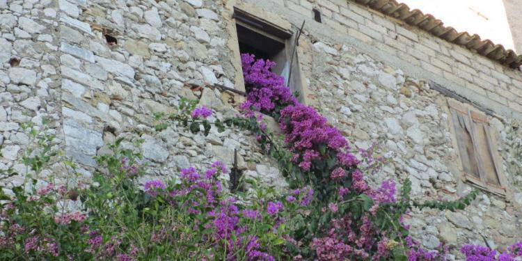 Tourrettes-sur-Loup The City of Violets in Provence