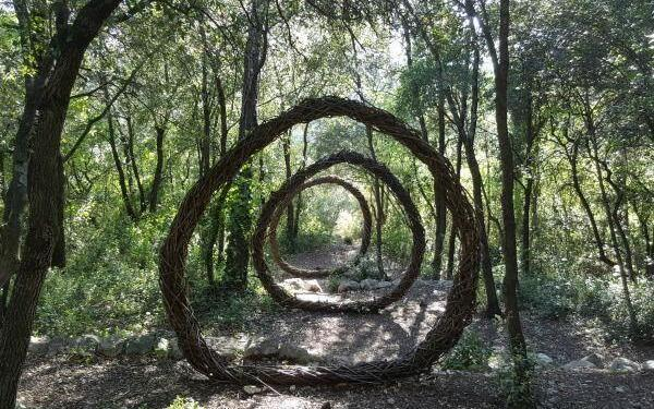 Spencer Byles Sculpture A Year in a French Forest