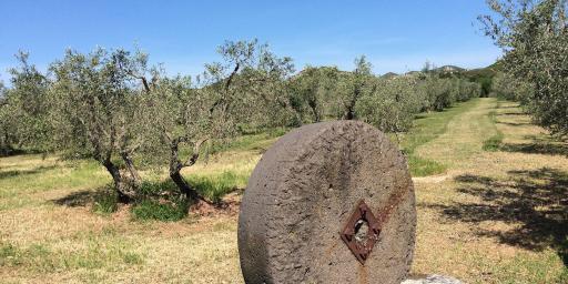 Biking Routes in ProvenceMaussane Alpilles Ride