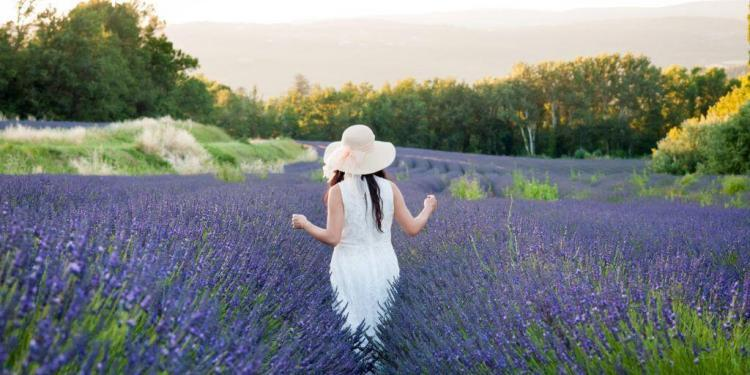 July Events Provence