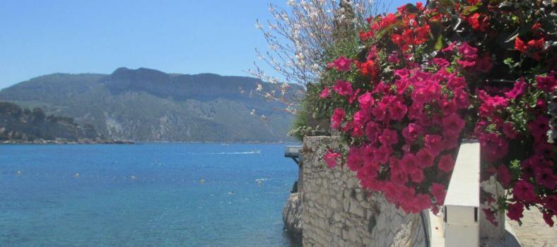 Cassis Seaside Views Mediterranean