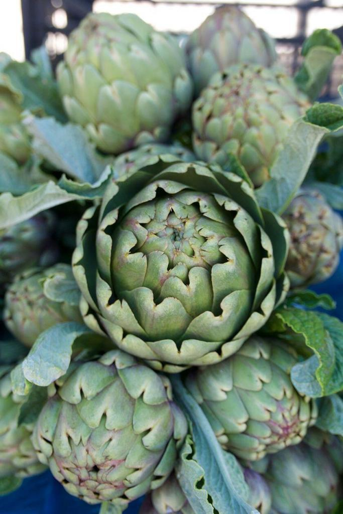 Restaurant Picks Nice Fresh Artichokes