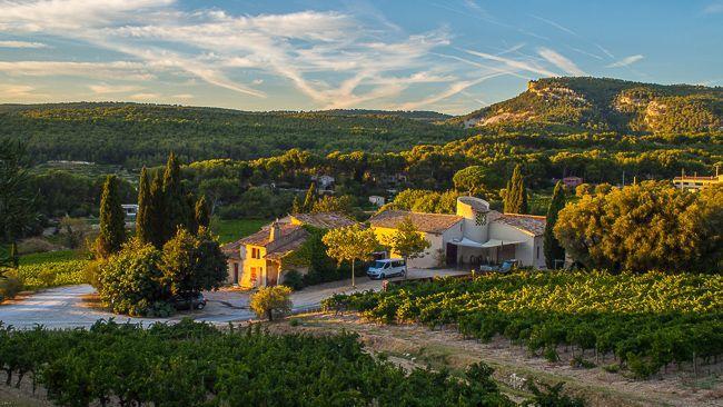 2017 Grape Harvest Provence Southern Rhone