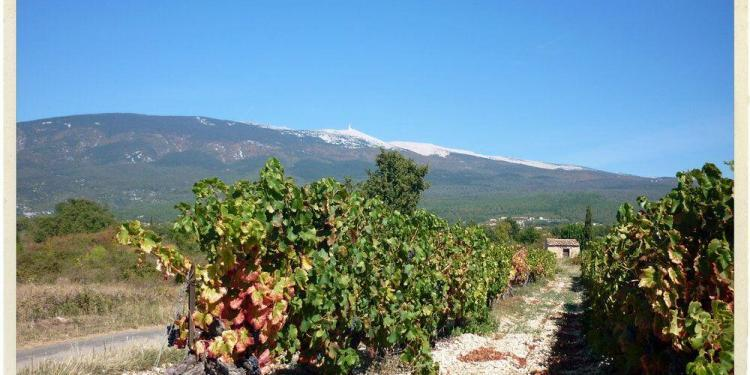 Autumn Provence @ATableenProvence