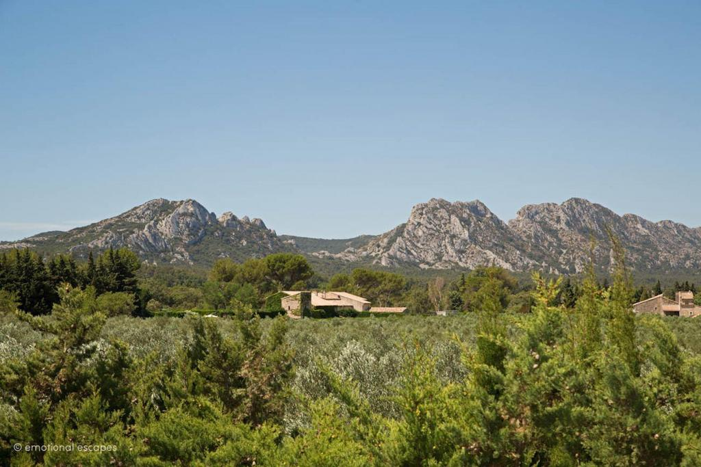Alpilles View Holiday Rentals Provence Emotional Escapes