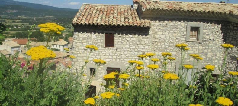 Banon Village Provence Cobblestone Vineyards
