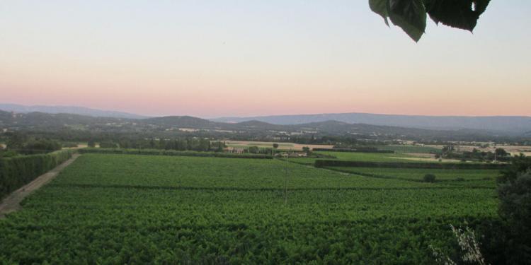 View La Terrasse Joucas Luberon