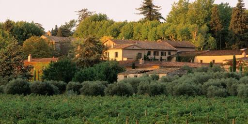 Chateau Sainte Roseline Wine