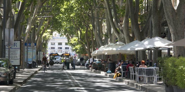 Avignon scene