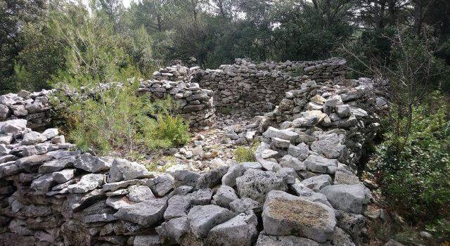 Walking Mur de la Peste Cabrières D'Avignon @VaucluseDreamer