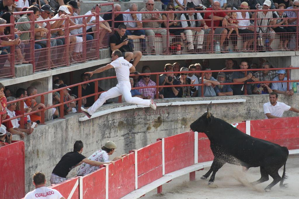 Cowboy Culture Bulls Rasateurs Course Camarguaise Provence @PerfectlyProvence