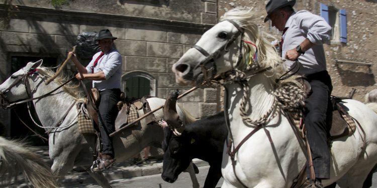 Cowboy Culture Provence Abrivado Fete du Village @PerfectlyProvence