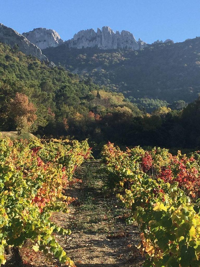 Travel Provence Drome Dentelles de Montmirail