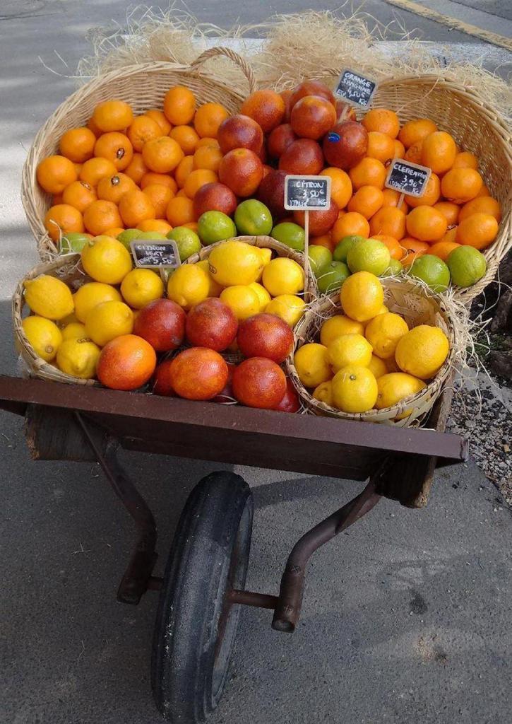 Wheelbarrow of fruit Saint-Remy de Provence Gayle Padgett