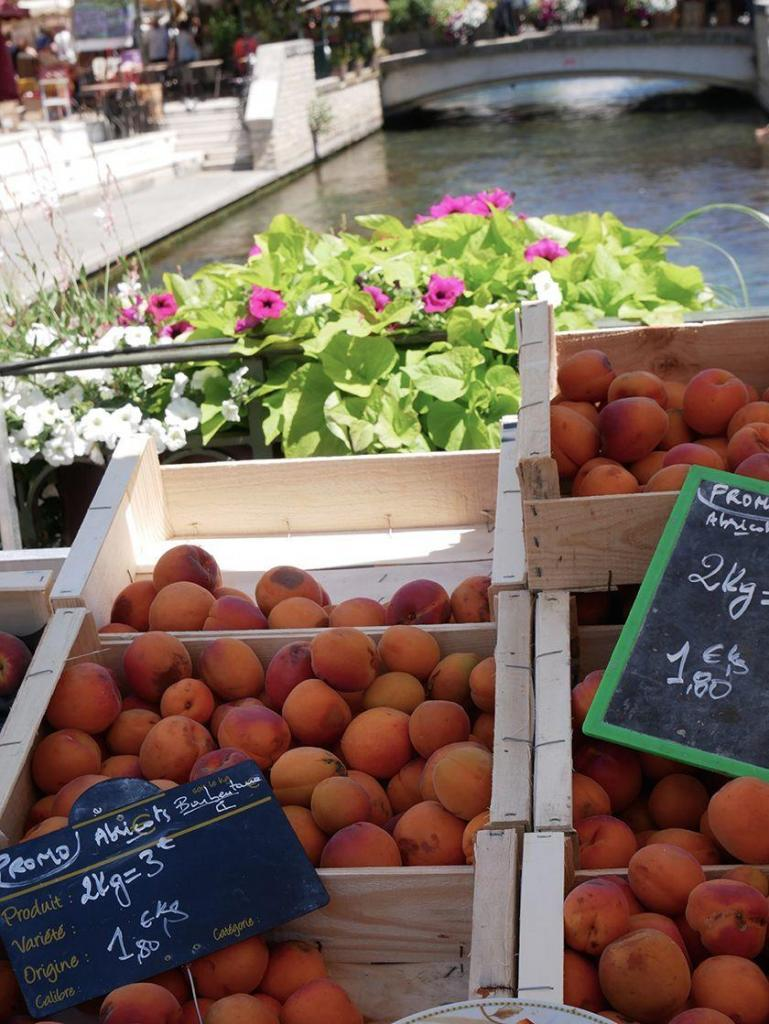 Georgeanne Brennan Market Apricots Isle sur la Sorgue
