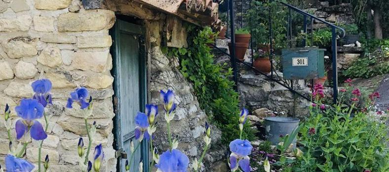 Goult Summer Rental Luberon Provence Stay
