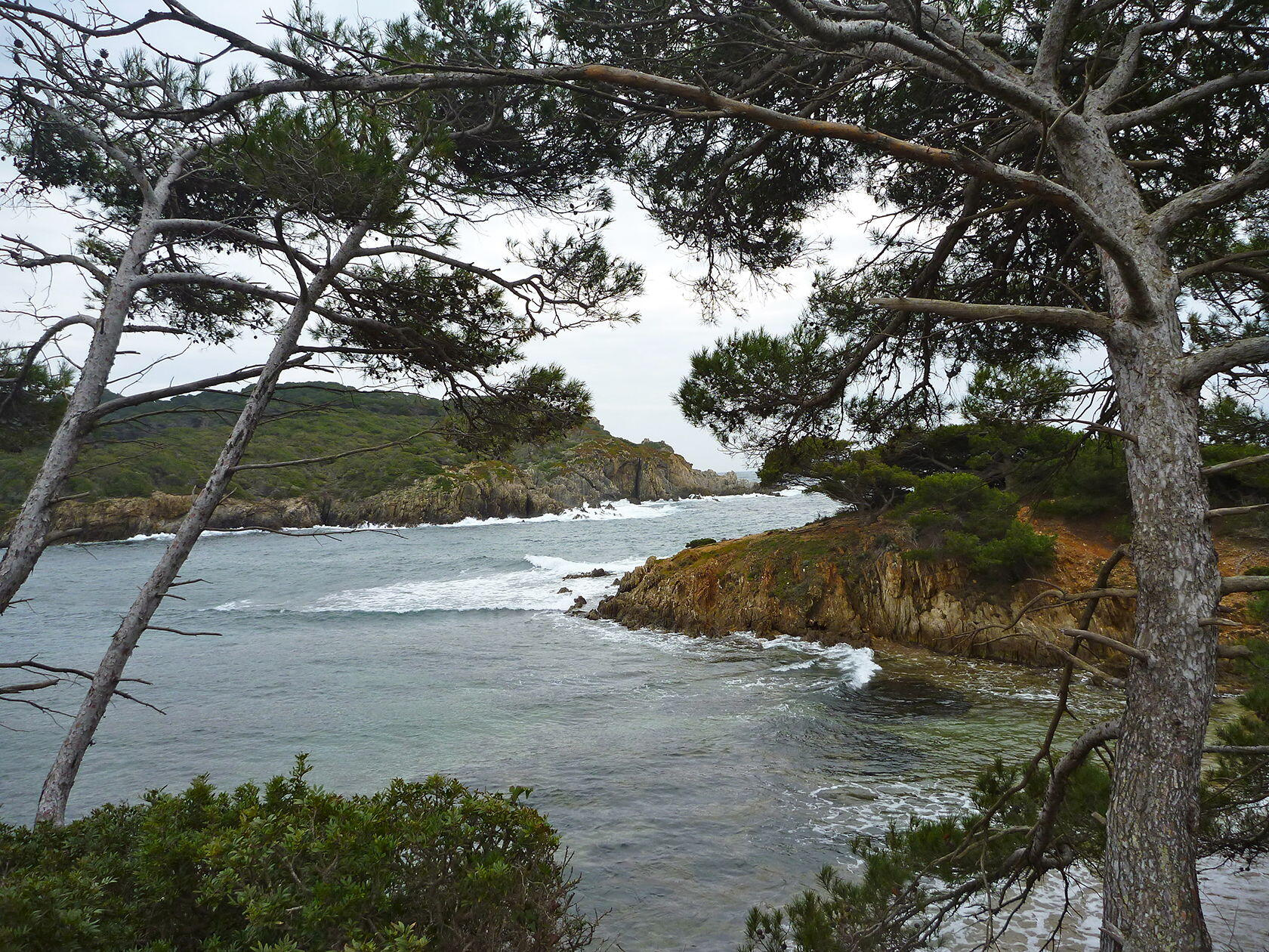 Porquerolles Provence