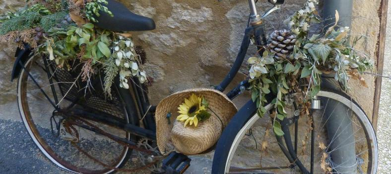 Expat Living Experiences Provence Bicycle Deborah Lawrenson