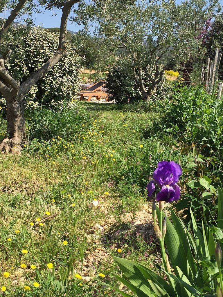 Domaine Saint Jacques Fresh Garden Roquette
