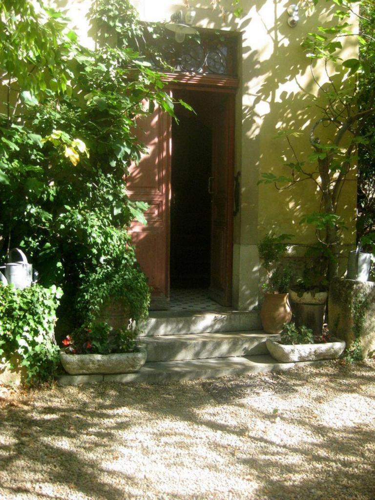 Renior Studio Art in Provence