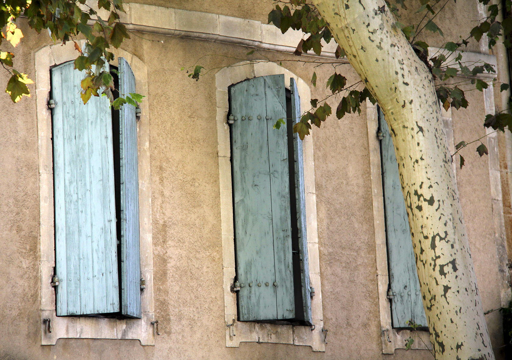 Visit Saint Remy de Provence Windows