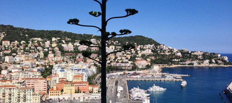 Nice Port French Riviera