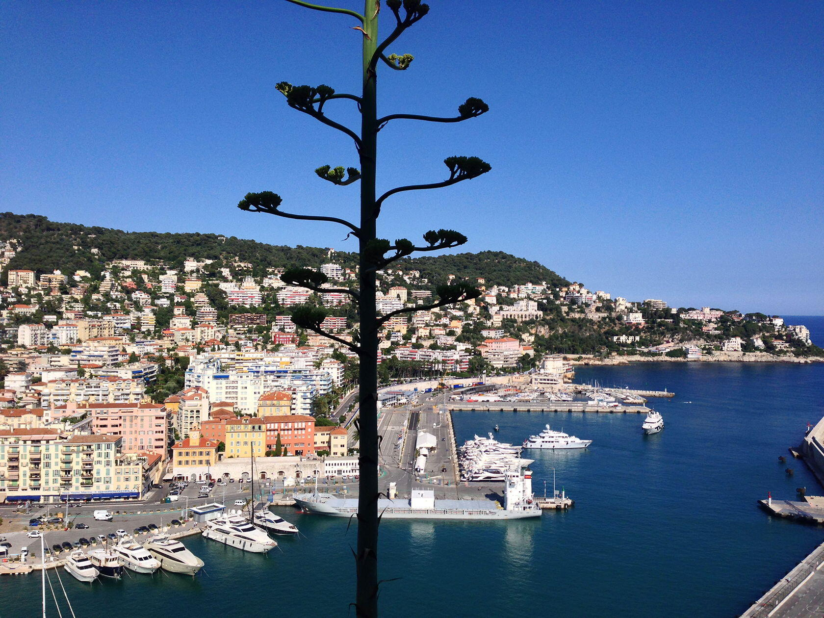 Nice Port Long Weekend French Riviera Walking Tour Old Nice
