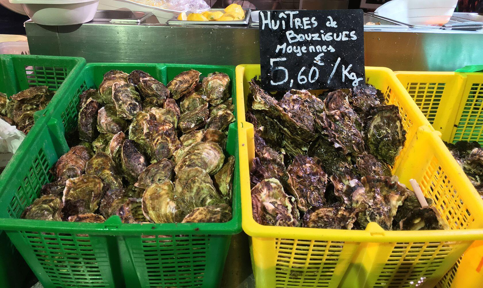Sète Food Lovers Guide Oysters