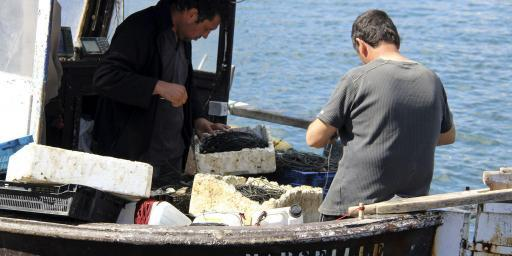 Planning Guide Visit Marseille Fishermen