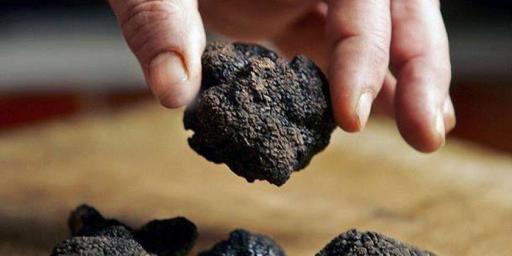 Black Truffles Truffle Butter