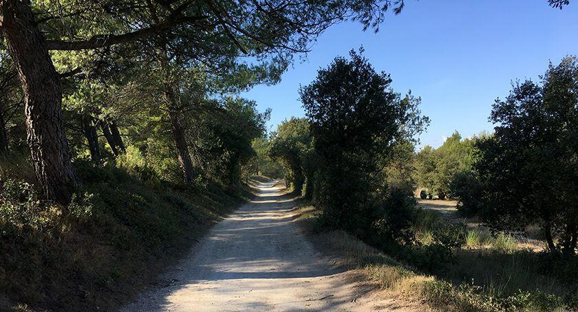 Alpilles Hiking Tips Lower route to Eygalieres