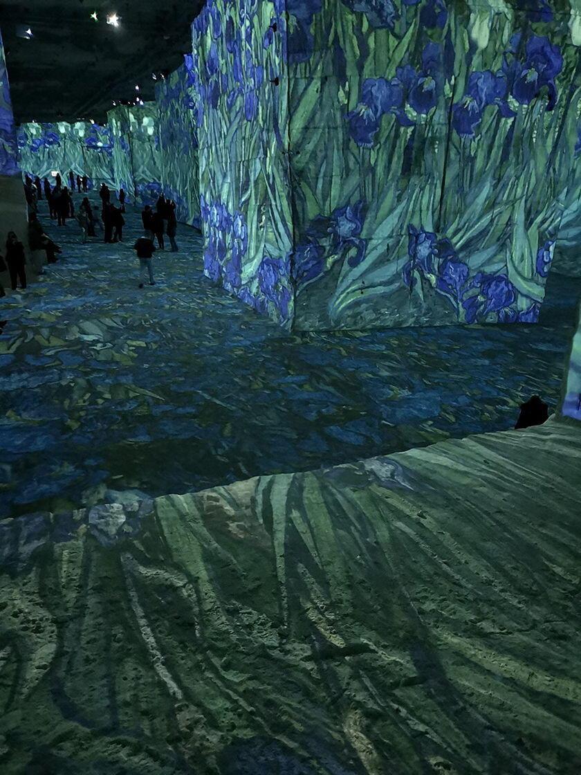 Carrieres de Lumieres Vincent van Gogh