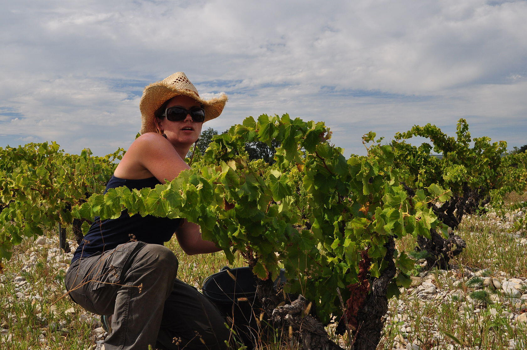 CAROLINE JONES OWNER WINEMAKER Domaine Rouge-Bleu