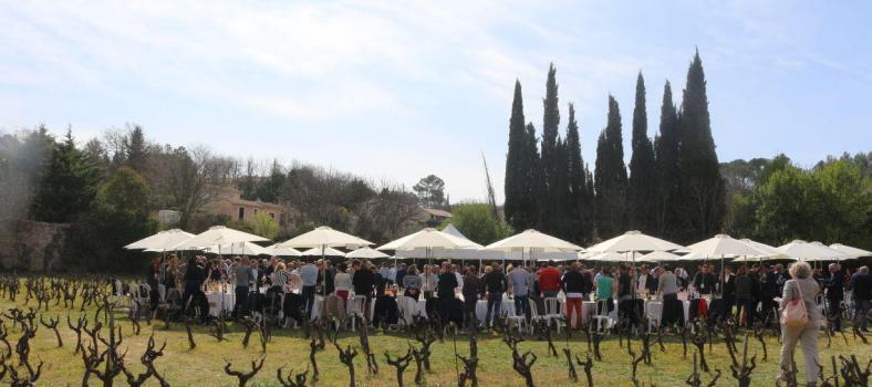 Wine Coteaux Varois Tasting