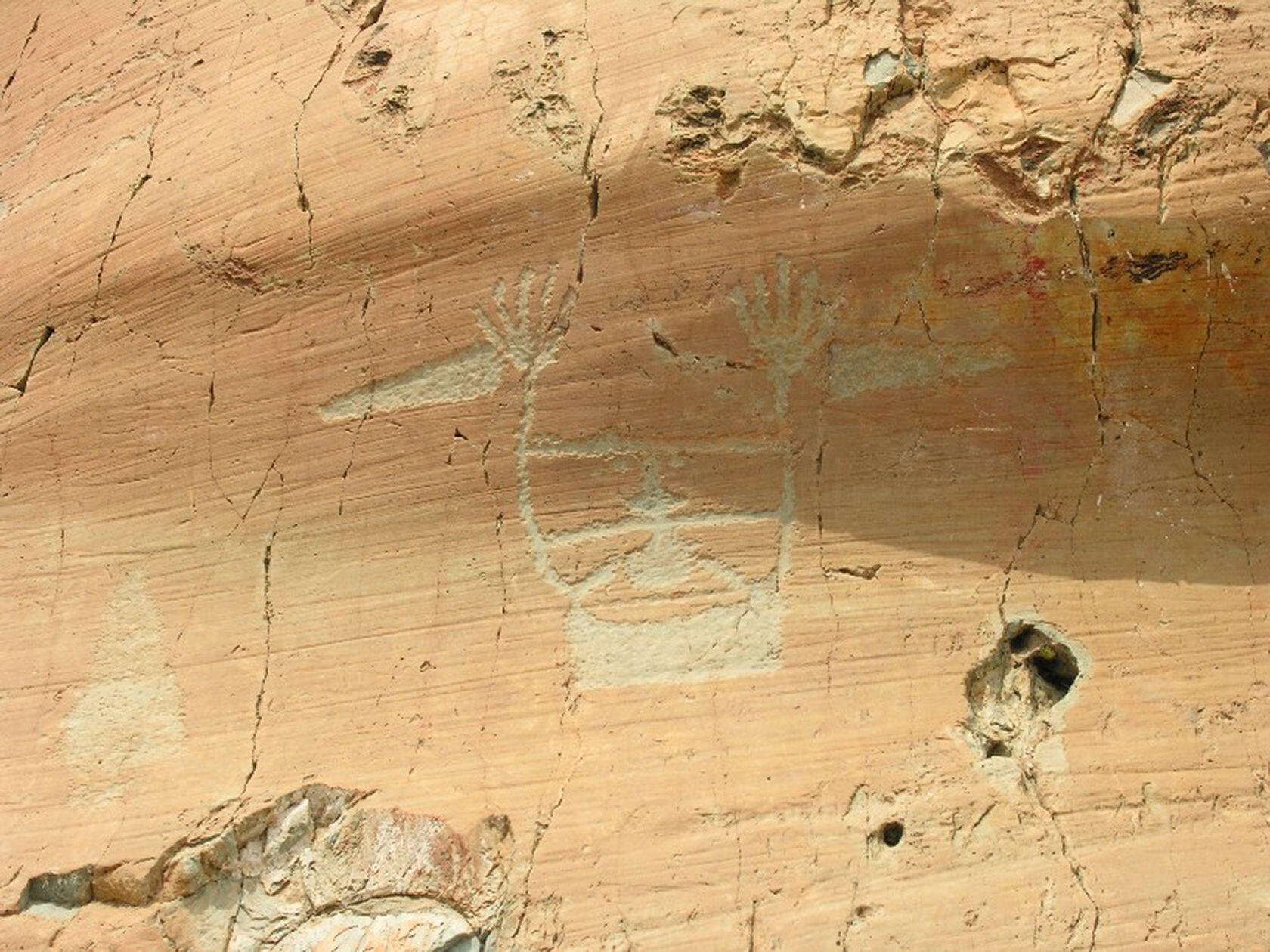 Primitive Rock Drawings Mercantour