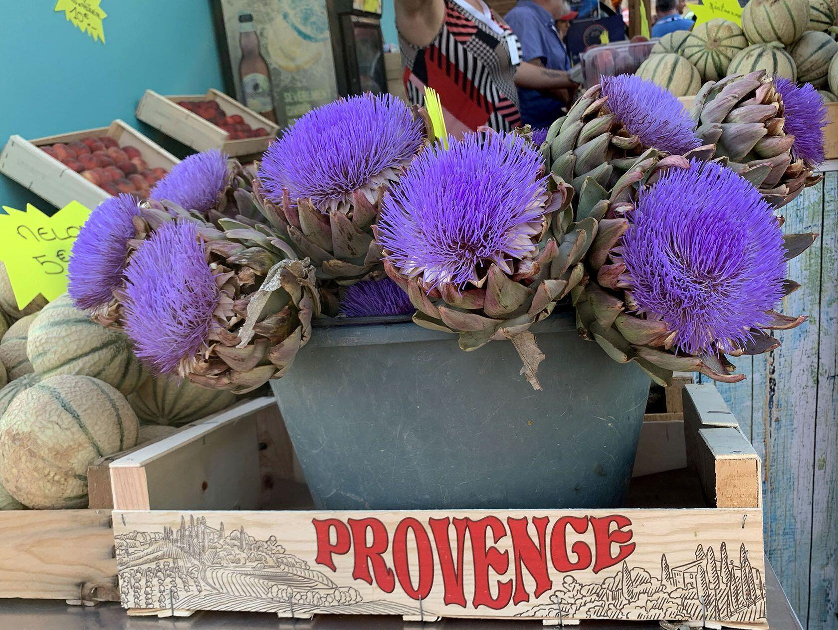 Provence Trip Planning Highlights Marseille Vieux Port Artichokes