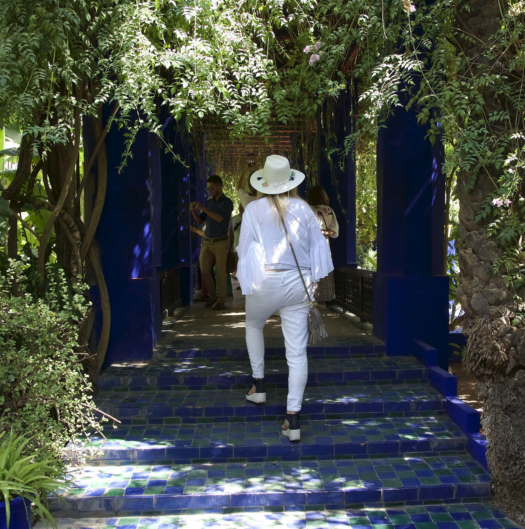 Jardin Majorelle Culinary Exploration Marrakesh Pitcher and Powell