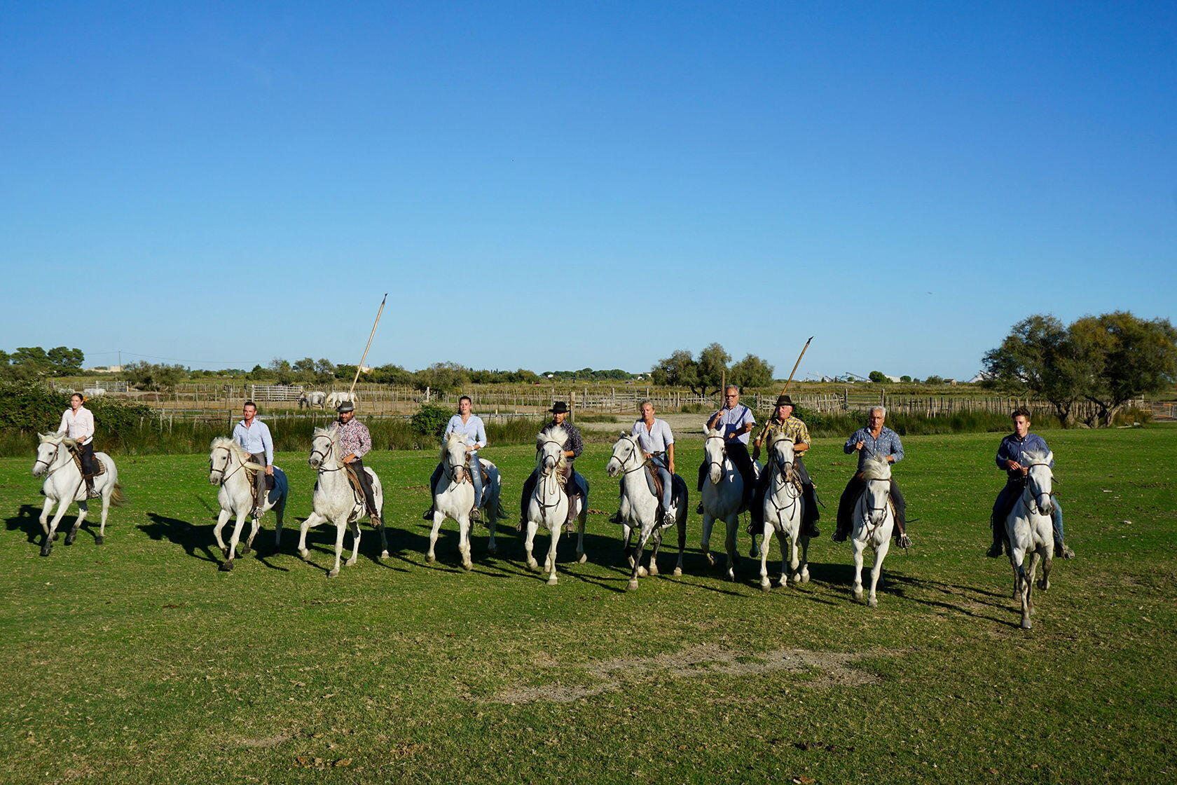 Explore Southern France Tours TripUSAFrance Camargue Manade