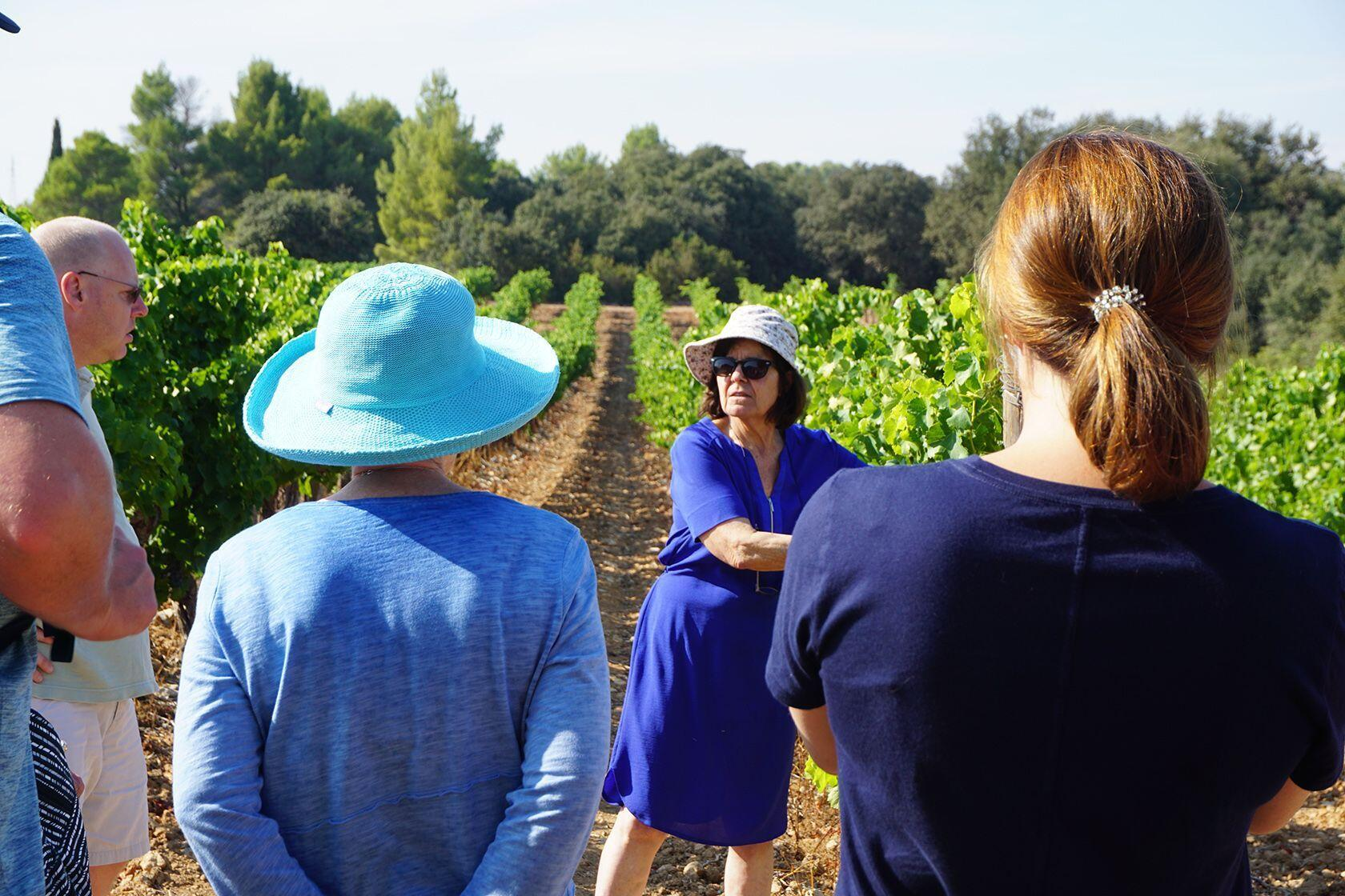TripUSAFrance Explore Southern France Tours Vineyards