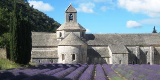 Abbaye de Senanque Lavender Luberon Valley