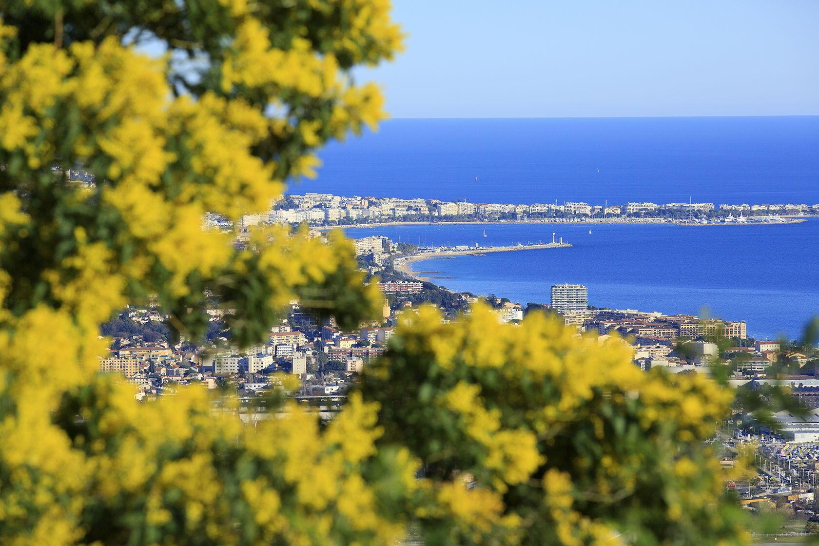 Golfe de La Napoule, Cannes