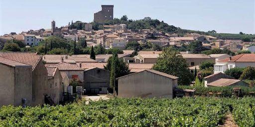 Châteauneuf-du-Pape Wine Domaine de la Charbonnière