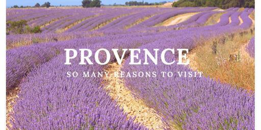 10 Reasons to Visit Provence