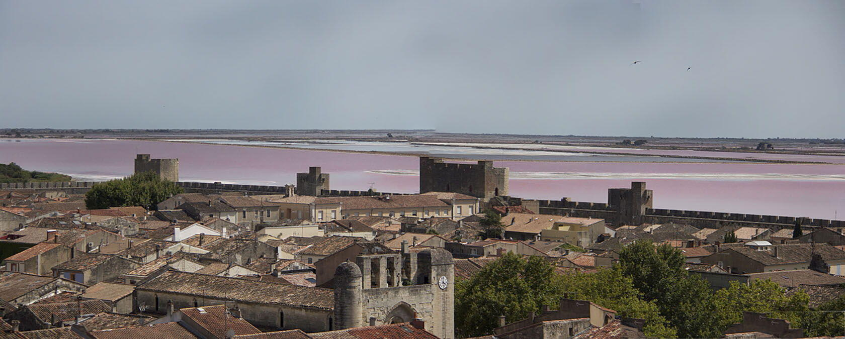 Aigues Mortes Camargue Panorama