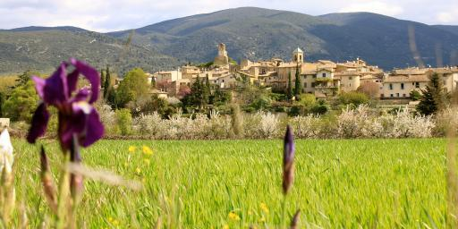 Rent Our Home Provence Lourmarin skyline