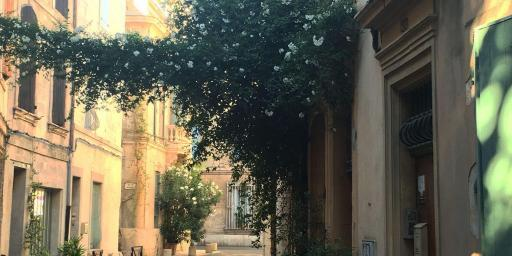 Arles Must-See Provence